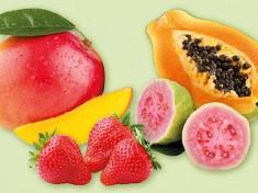 Fruchtpuerees.jpg