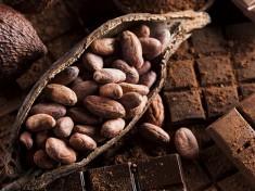 Gruppenbild Heisse Schokolade_kakaohaltig.jpg