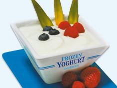 Frozen Yoghurt.jpg
