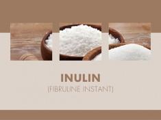 Inulin (Fibruline Instant) 5kg-Eimer