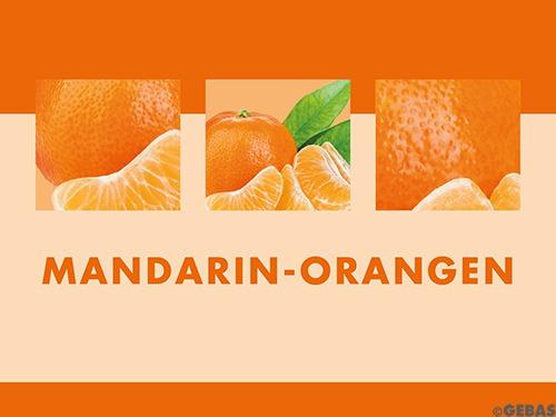 Mandarin-Orangen 12 x 1/1 Dosen