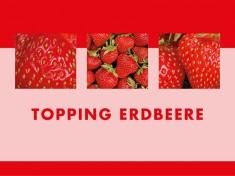 Erdbeer-Topping 7kg Kanister