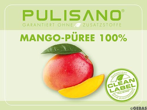 Mangopüree ind. Alphonso 6 x 3/1 Dosen (3,1kg)